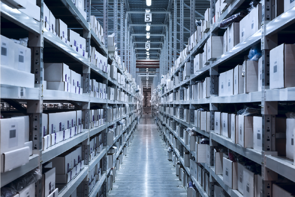 Importance of Having a well-structured Warehouse in Logistics